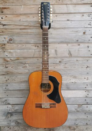 RIF 643  1973 Hofner 12 Strings Vintage for Luthiers, spare or parts